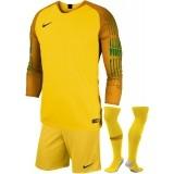 Conjunto de Portero de Fútbol NIKE Gardien P-898043-719